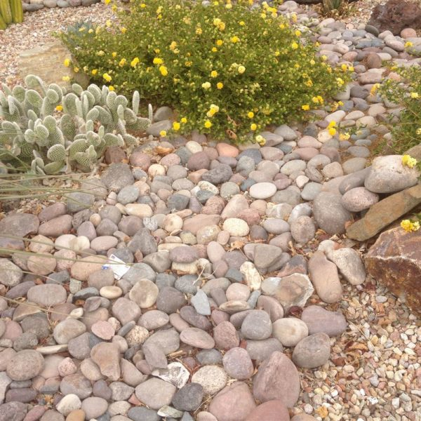 Supplier of River Pebbles in India